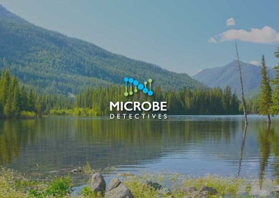 Microbe Detectives | Milwaukee