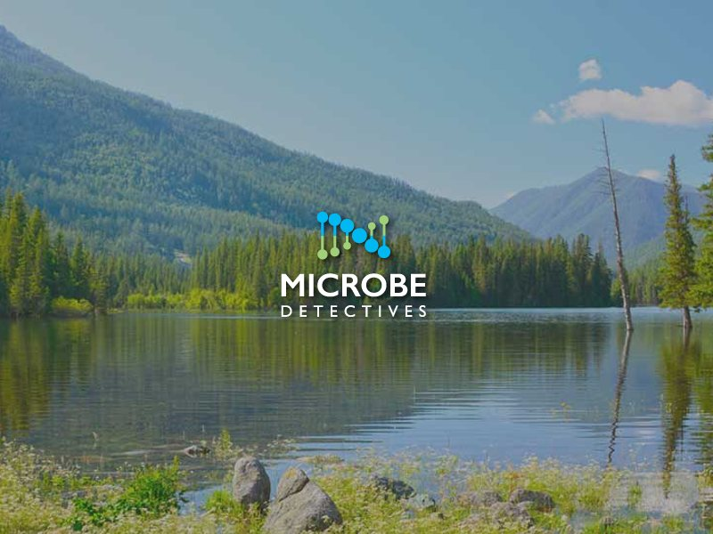Microbe Detectives | Milwaukee